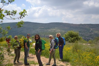 Kletter- & Yogaroadtrip durch das heilige Land